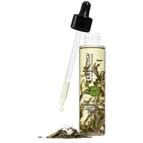 Teaology Bancha Oil 100ML